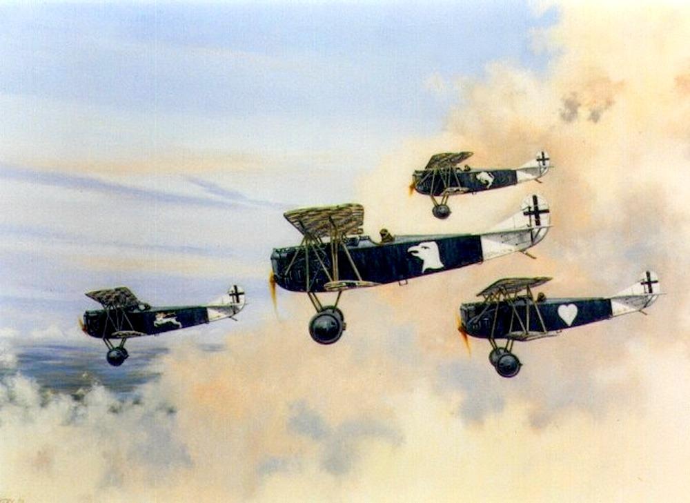 flug cxi 1911